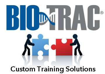 Custom Training Solutions