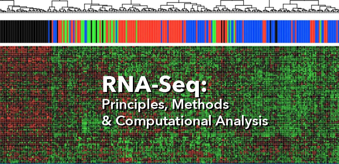 RNA-Seq Biotechnology Training Program
