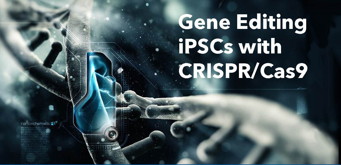 Gene Editing iPSCs with CRISPR/Cas9 Biotechnology Training Program