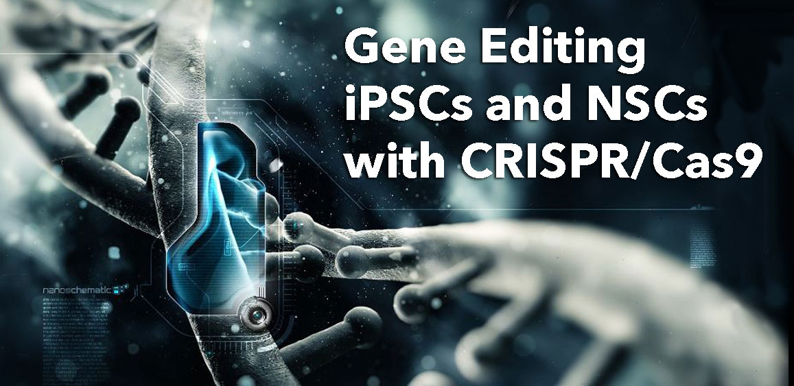 Gene Editing iPSCs & NSCs - Bio-Trac Biotechnology Training