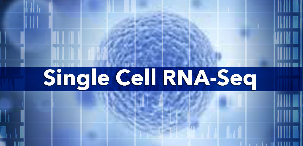 Single Cell RNA-Seq - Bio-Trac Biotechnology Training